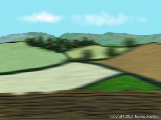 Wind in the Willows: View from a speeding car